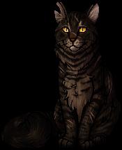 Tigerstar: Heart of Evil?