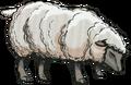 Sheep.RP