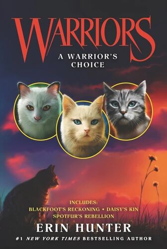 A Warrior's Choice