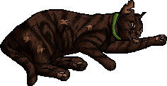 File:Purdy.kittypet.png