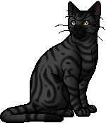 File:Darkstripe.warrior.png