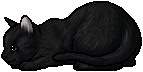 File:Crowfeather.kit.png