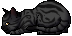 Darkstripe.kit.png