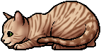 File:Tawnypelt.kit.alt.png