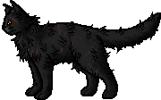 File:Yellowfang.rogue.png