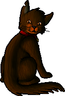 Sandynose.personal.png