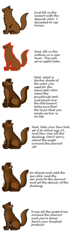 File:SolidCatTutorial.png