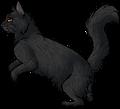 Violet Dawn.hunter