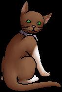 Clovertail.kittypet.png