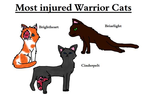 Warrior Cats Truth Or Dare