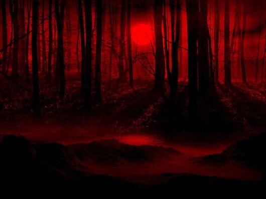 Dark night full moon-811490