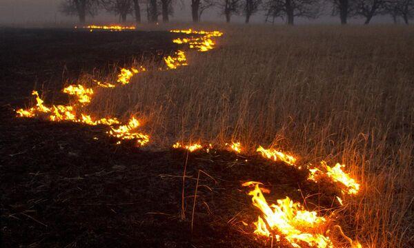 Fireclantheme1
