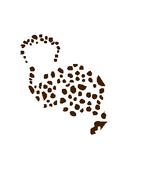 Spots Blank 1