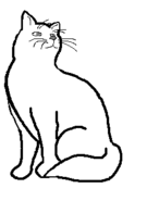 CatLayout14