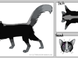 Ghostpaw ShadowClan