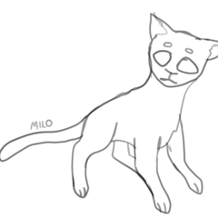 StarClan Kit (Shorthaired)
