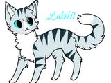 Lakekit