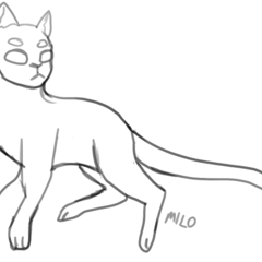 StarClan Cat (Shorthaired)