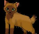 Foxleg