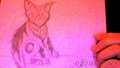 Thumbnail for version as of 00:40, February 2, 2013