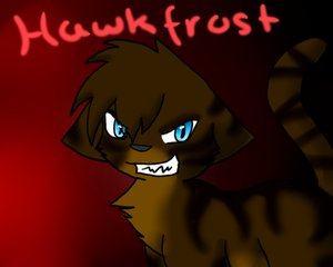 File:Hawkfrost.jpg