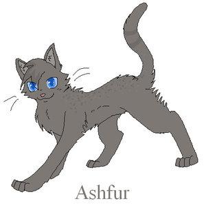 Ashfur