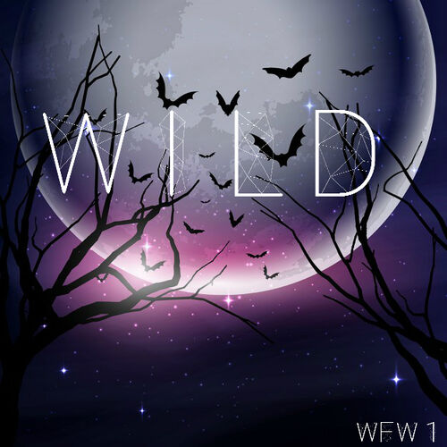 Dark-forest-with-a-full-moon-for-halloween 1048-3267