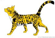 Leopardspotneko