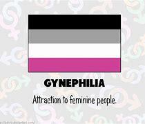 Gynephilia