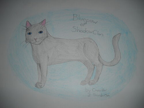 Bluepaw of Shadowclan