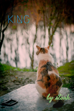 King.cover