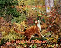 Ginger-cat-in-autumn-scene-photo-wp07575 kindlephoto-36873393