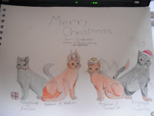 Christmas Darkness Rising Cats