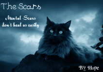 The Scars Cover