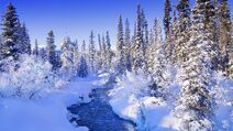 Steamy-river-by-the-snowy-forest-52669-1920x1080