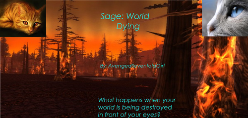 World Dying