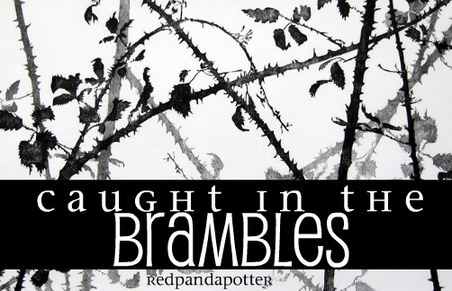 Caught in the Brambles