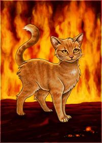 Fireanewdawn