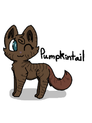 Pumpkintail-bday-gift