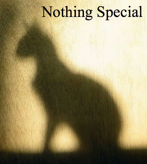 Nothing Special Cover