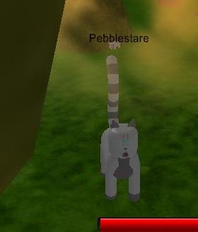 Pebblestare