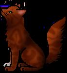 Squirrelflight.warrior