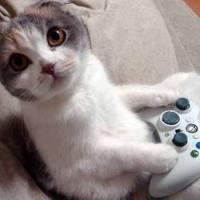 File:Game controlloer.jpg