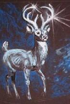 Deer-image-1