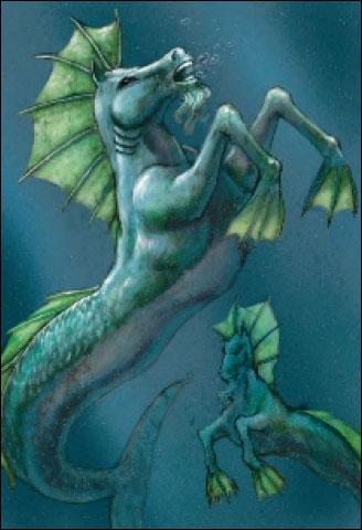 File:Hippocampus.jpg