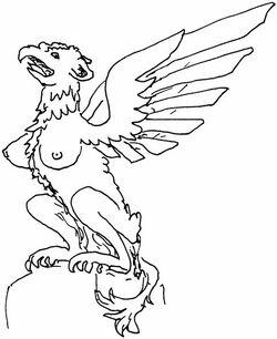 DL-Harpygriff