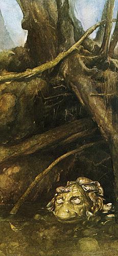 Alan lee faeries shellycoat med