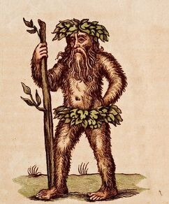 C0087980-A wild man of the woods-SPL