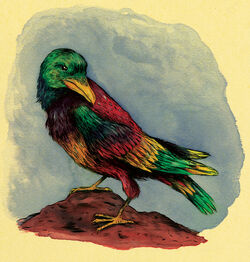 Mythical-rainbow crow-1-