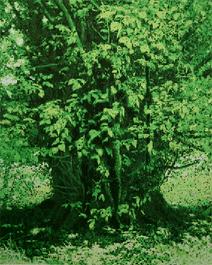 GreenMan-3